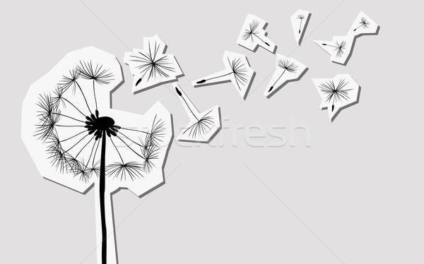 Sziluettek pitypang szél virág fény művészet Stock fotó © dip
