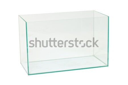 empty aquarium Stock photo © Discovod