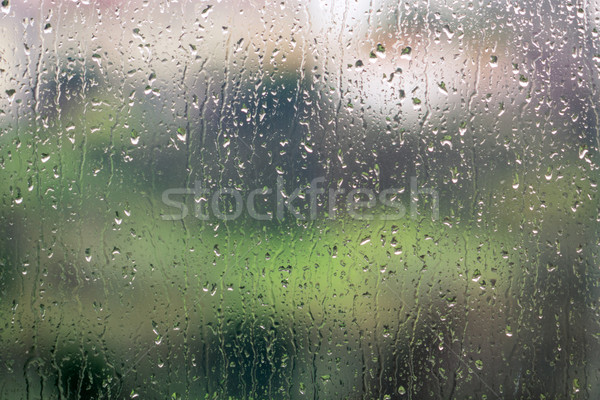 Raindrops on the Glass Stock photo © Discovod