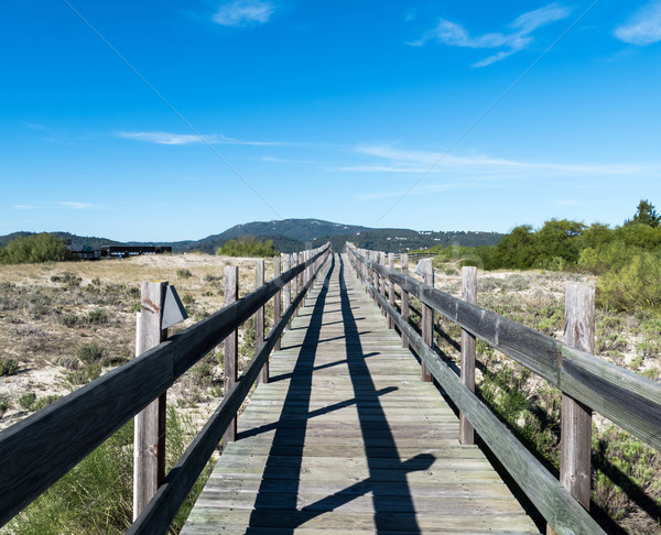Walking on Wooden Walkway in the Sand Dunes Stock photo © Discovod
