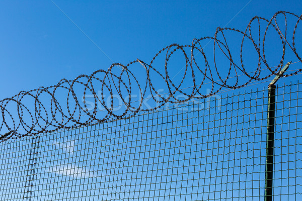 Wired Fence with Spiral Barbwire Stock photo © Discovod
