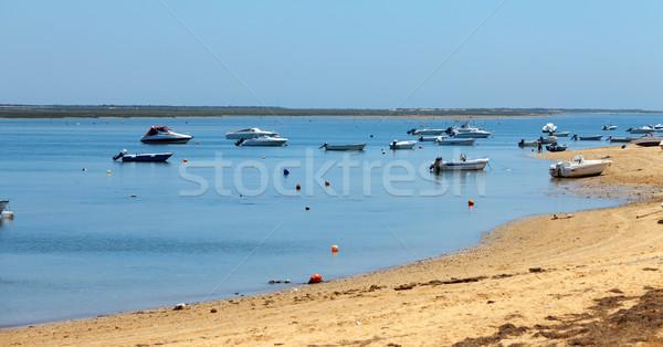 лодках берега природы морем лет Сток-фото © Discovod