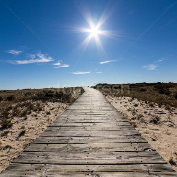 ведущий песчаный пляж пляж воды Сток-фото © Discovod