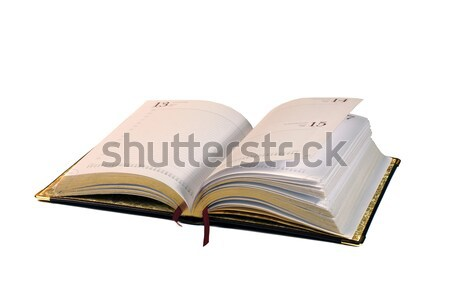 opened diary Stock photo © Discovod
