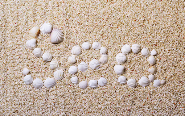 Title 'Sea' from shells with coral sand Stock photo © Discovod