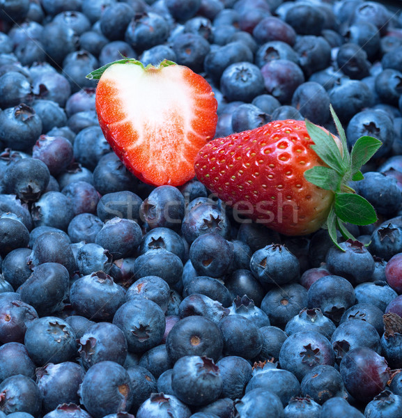 Freshly picked blueberries with strawberry Stock photo © Discovod