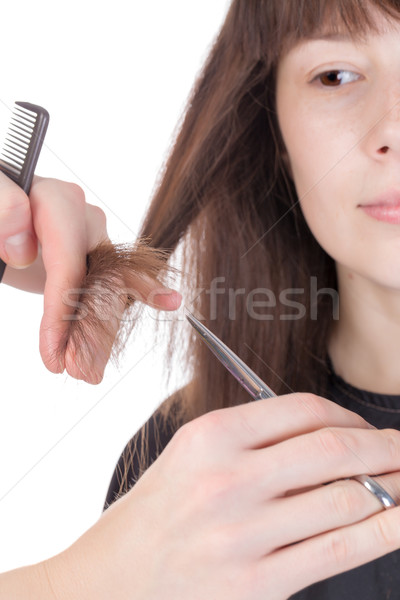 Young woman having a hair cut Stock photo © Discovod