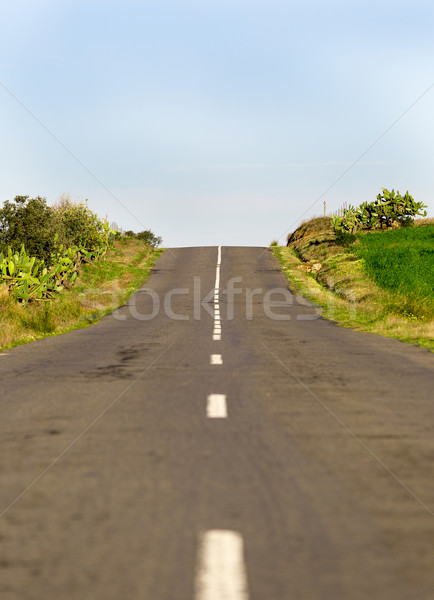 Long Country Road with Markings Stock photo © Discovod