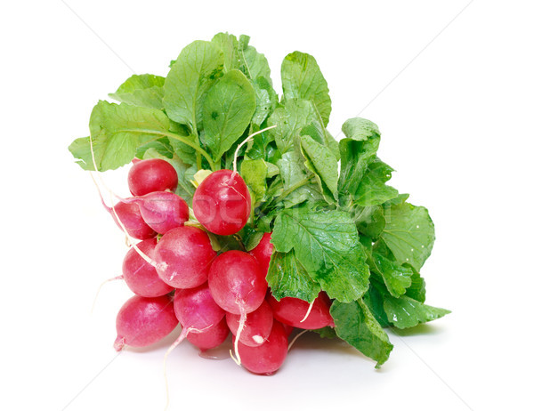 Small garden radish with leaf Stock photo © Discovod