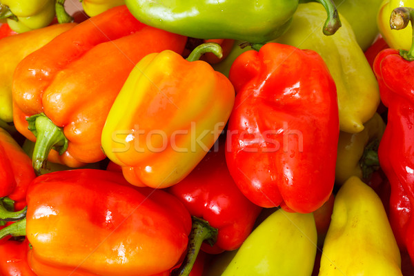 Lot of Multicolored Sweet Pepper background Stock photo © Discovod