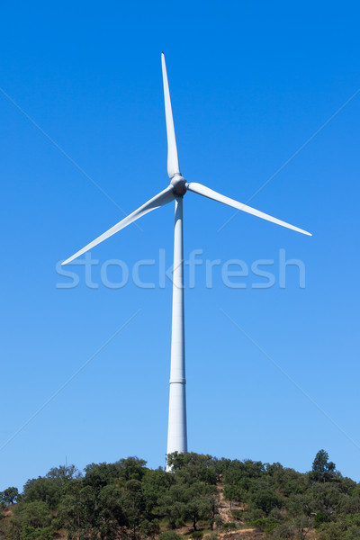 Wind elektrische generator blauwe hemel hemel energie Stockfoto © Discovod