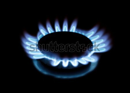 Flame of gas Stock photo © Discovod
