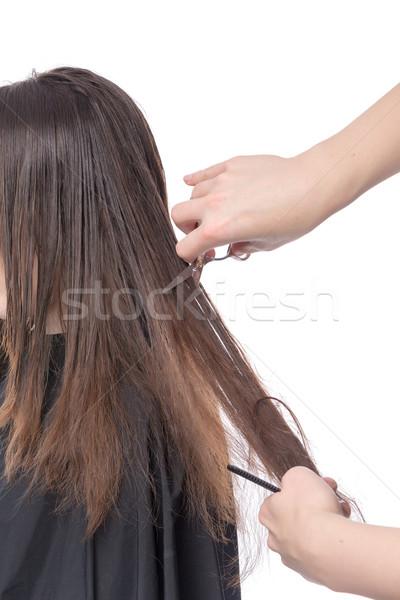 Mulher jovem cabelo cortar cabeleireiro longo morena Foto stock © Discovod