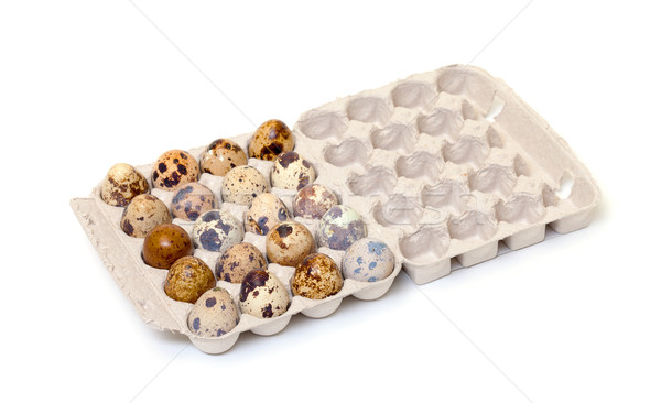 Speckled quail eggs in a carton box Stock photo © Discovod