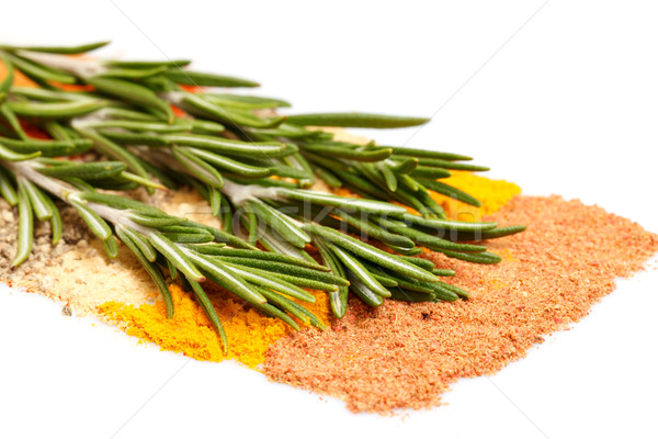 spices and rosemary Stock photo © Discovod