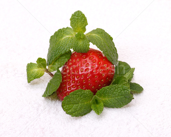 Strawberries with mint Stock photo © Discovod