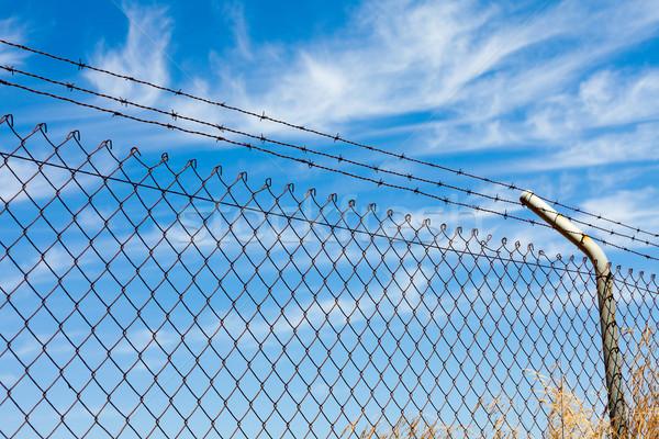 Ogrodzenia drutu kolczastego Błękitne niebo metal bezpieczeństwa Zdjęcia stock © Discovod