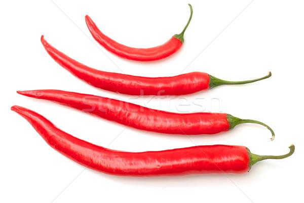 Isolado branco grupo alimentação quente Foto stock © Discovod