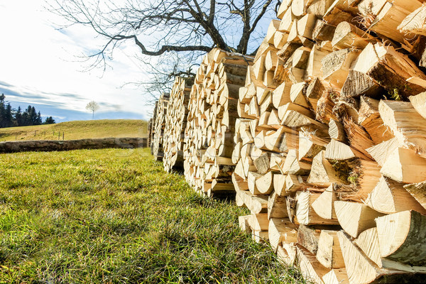 Image view of a pile of cut wood circle piles outdoor in switzer Stock photo © DisobeyArt