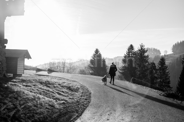 Young woman walking with her dog in swiss mountains with back su Stock photo © DisobeyArt