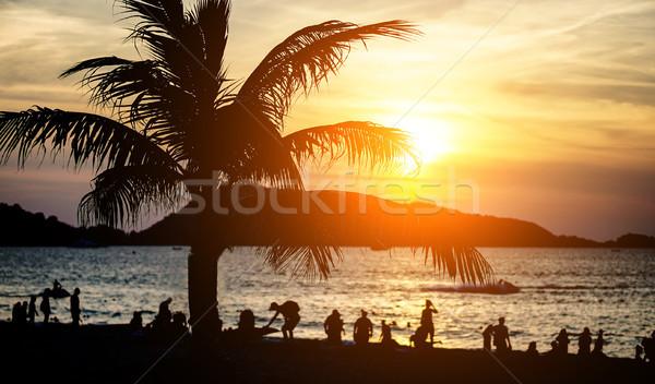 Silhouet mensen tropisch strand zonsondergang toeristen genieten Stockfoto © DisobeyArt