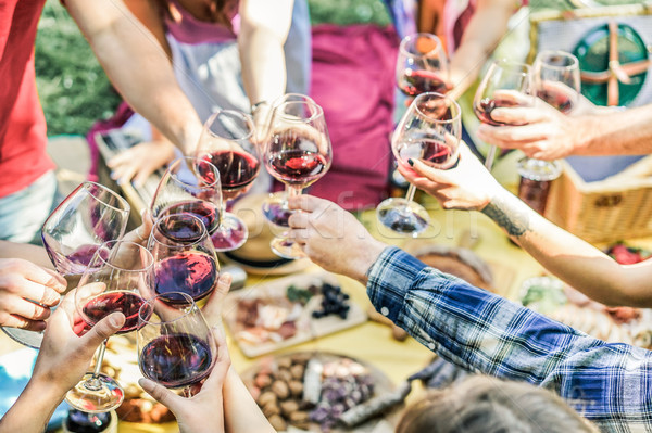 Group of friends enjoying picnic while drinking red wine and eat Stock photo © DisobeyArt