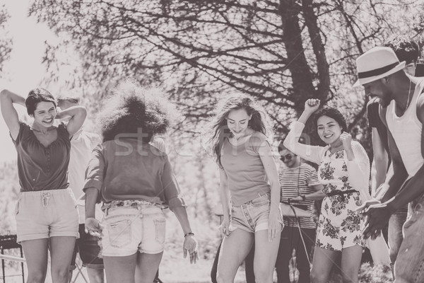 Happy friends dancing with dj set in outdoor party - Young multi Stock photo © DisobeyArt