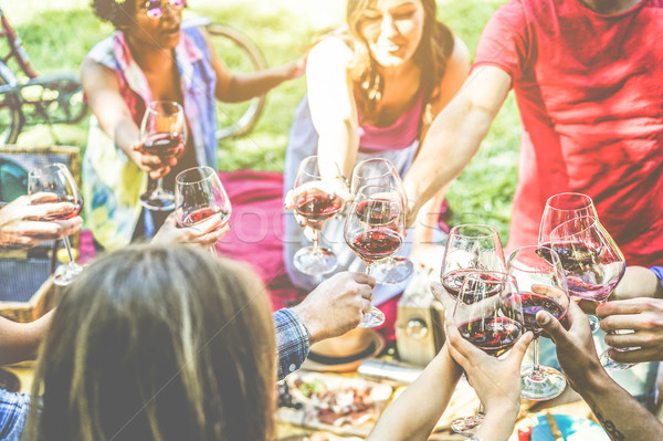 Group of friends enjoying picnic while cheering with red wine an Stock photo © DisobeyArt