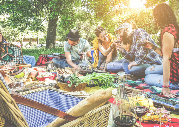 Csoport barátok éljenez vörösbor piknik szabadtér Stock fotó © DisobeyArt