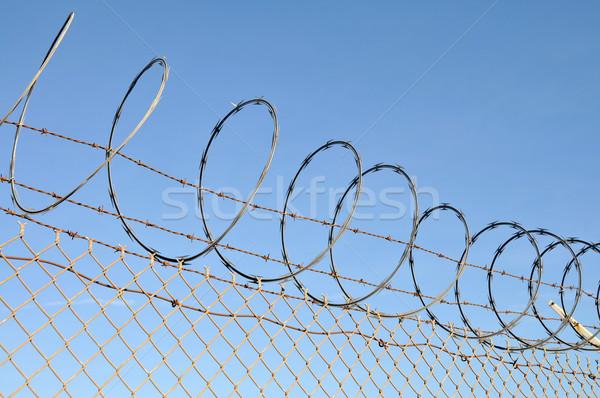 Razor wire Stock photo © disorderly