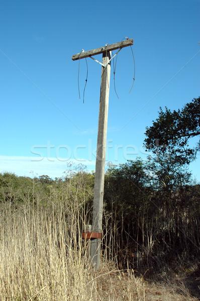 Utility paal gebroken gesneden Stockfoto © disorderly