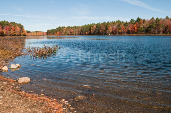 Reservoir najaar New Hampshire water bladeren meer Stockfoto © disorderly