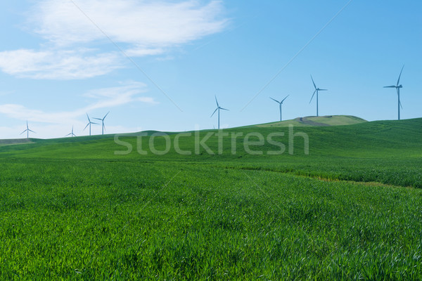 Turbines Stock photo © disorderly