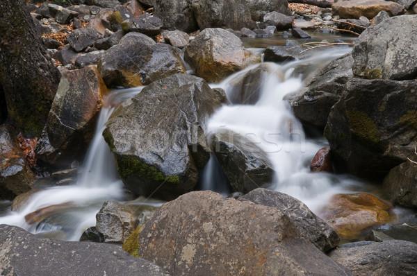 Kaskade Kalifornien Wasserfall Park fallen Stock foto © disorderly