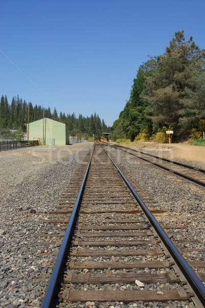 Railroad tracks Stock photo © disorderly