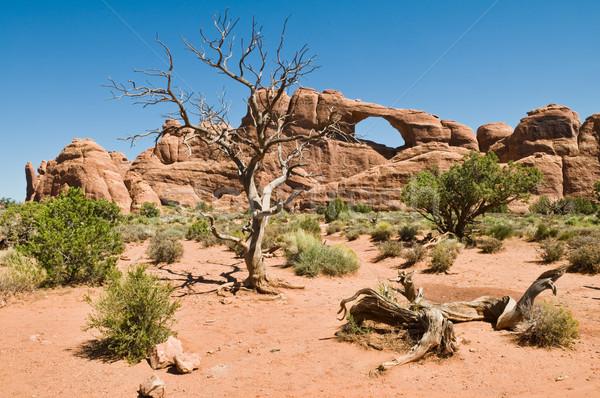 Skyline арки парка пустыне каменные Сток-фото © disorderly