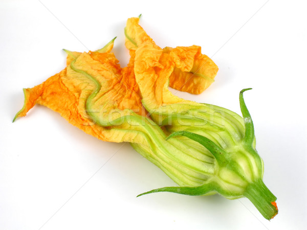 Squash blossom Stock photo © disorderly