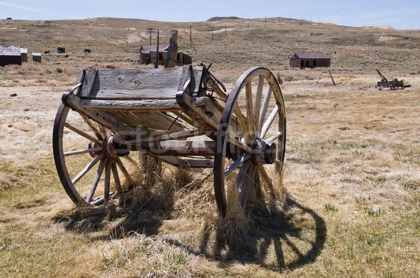 Edad secar hierba histórico parque Foto stock © disorderly