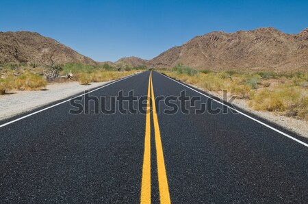 Desert highway Stock photo © disorderly