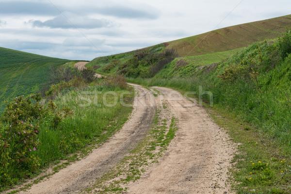 Estrada de terra trigo campos fazenda sujeira hills Foto stock © disorderly
