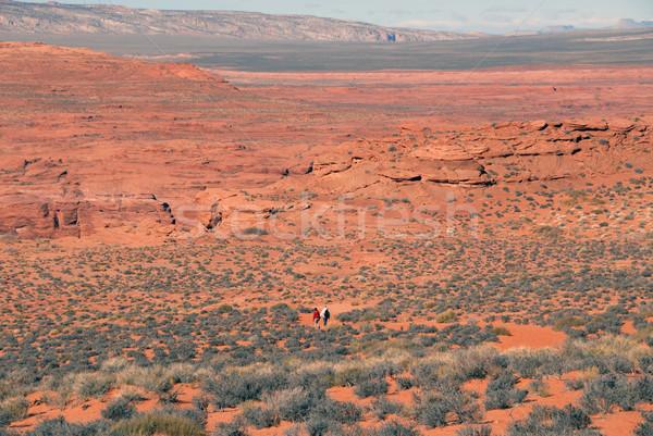 砂漠 徒歩 徒歩 馬蹄 コロラド州 ストックフォト © disorderly