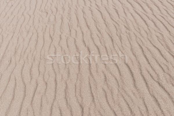 Kum desen muhteşem park dağlar Stok fotoğraf © disorderly