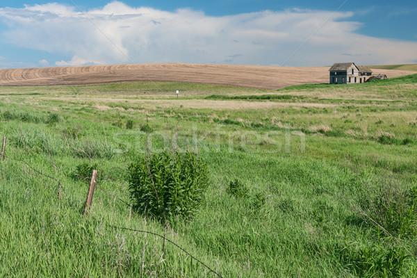 Schuur velden tarwe veld gebouwen landbouw Stockfoto © disorderly