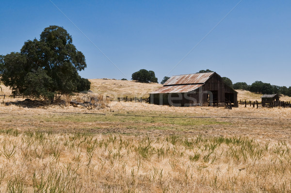 納屋 草原 谷 カリフォルニア フェンス ストックフォト © disorderly