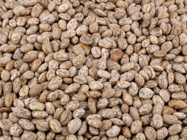 Pinto beans Stock photo © disorderly