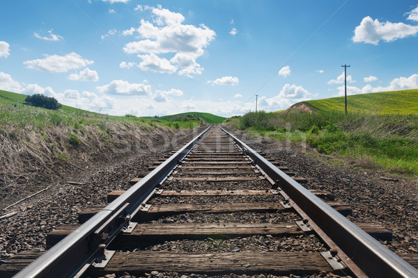 Railroad Stock photo © disorderly
