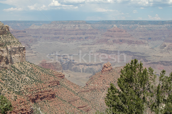 Grand Canyon view meridionale texture parco Foto d'archivio © disorderly