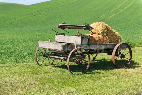 Vagon öreg széna szállítás mezőgazdaság Washington Stock fotó © disorderly