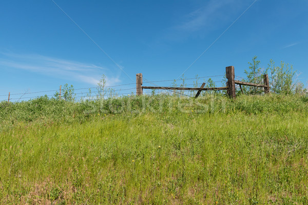 Dikenli tel çit tepe çim tel Stok fotoğraf © disorderly