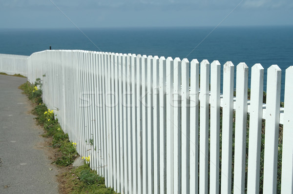 Picket fence Stock photo © disorderly